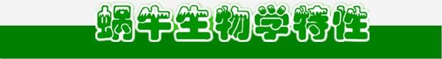http://www.zhongwochanye.com/?p=72